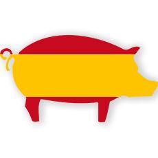 Schweinefleisch aus Spanien